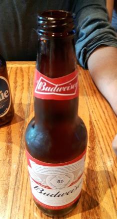 2017-08-13 - 285 - Budweiser _500beers